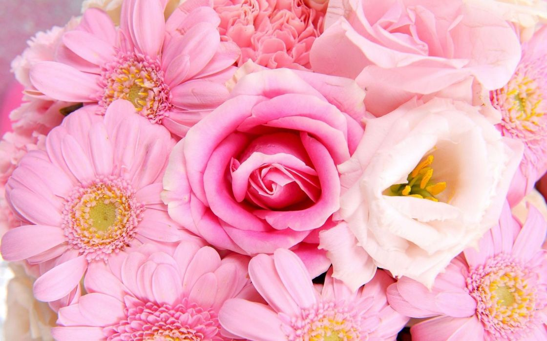 nature flowers bouquet pink petals wedding holiday wallpaper