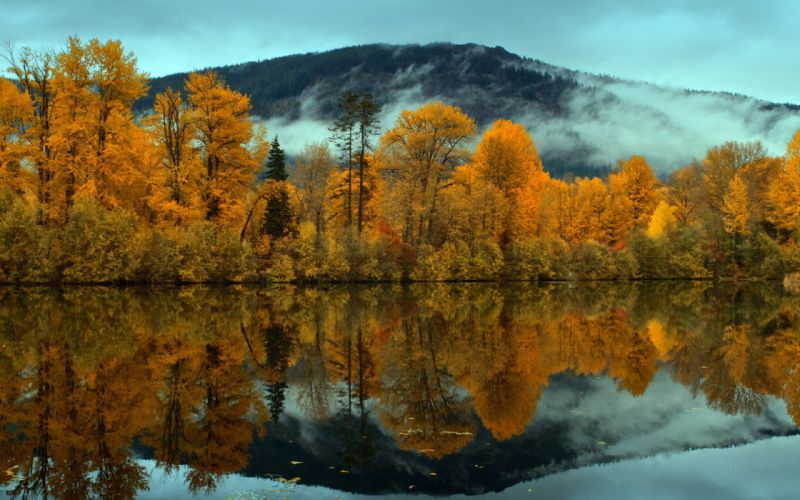 nature landscapes trees forest mountains clouds fog mist sky clouds gray autumn fall seasons lakes rivers pond reflection wallpaper
