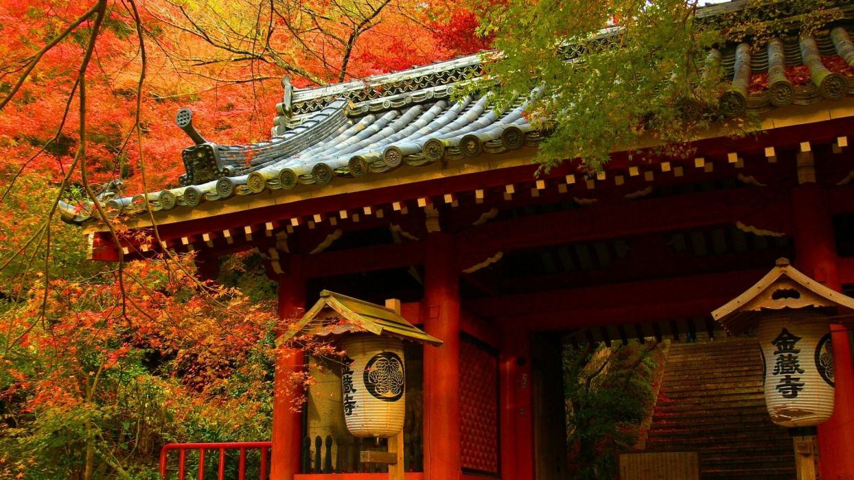 Japanese asian oriental architecture buildings houses wood teak artistic roof tiles nature trees forest autumn fall seasons leaves color wallpaper