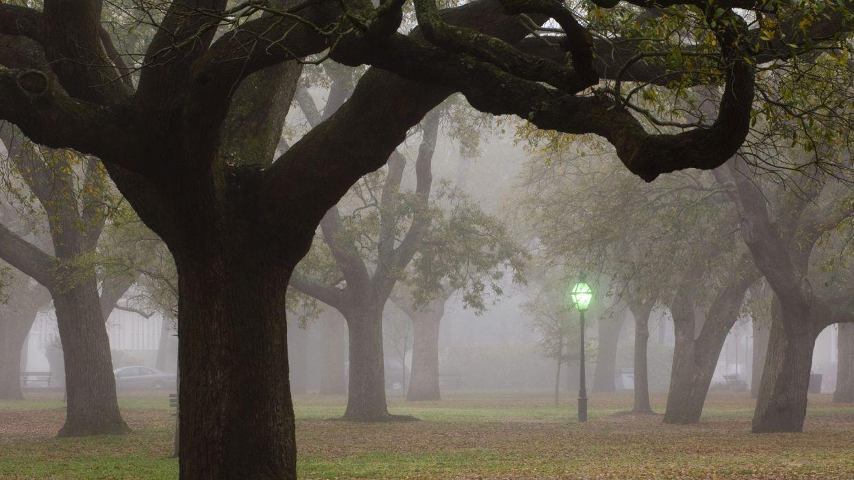 nature landscapes trees park garden lamp lightpost post light leaves autumn fall seasons fog mist haze leaves wallpaper