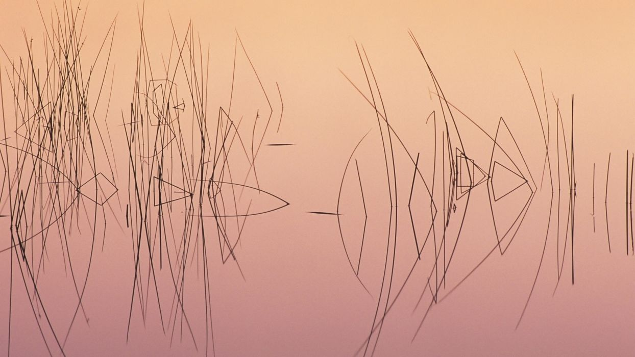 nature lakes water pond reflection sunrise sunset grass reeds wallpaper