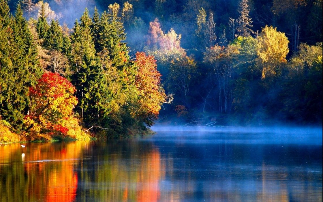 nature landscapes rivers lakes water reflection autumn fall seasons trees forest fog mist haze sunlight sunrise sunset wallpaper
