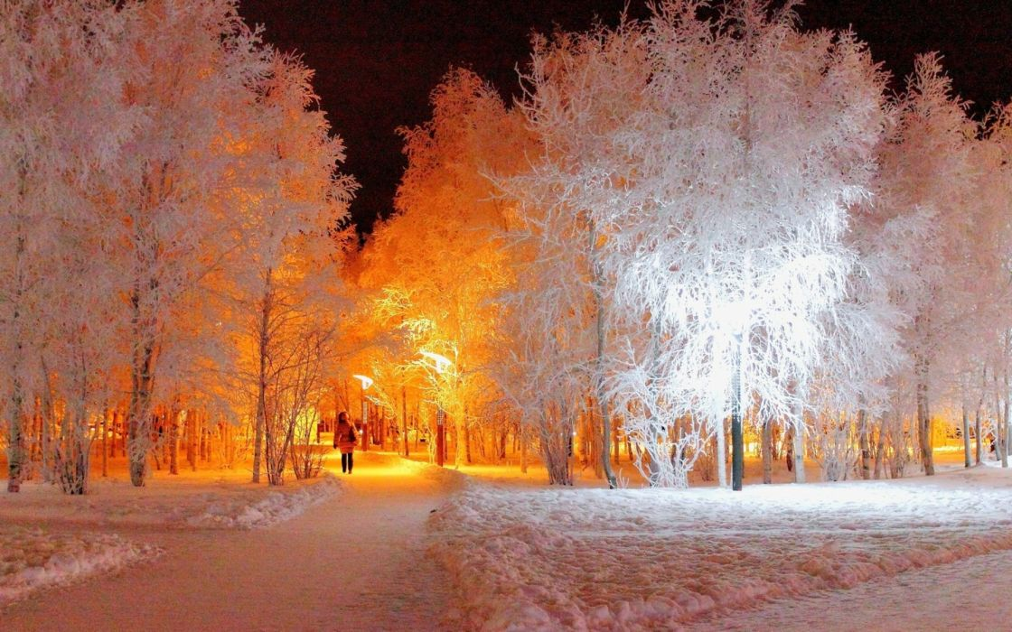 nature landscapes path sidewalk garden park women females girls winter snow seasons frost cold color contrast wallpaper