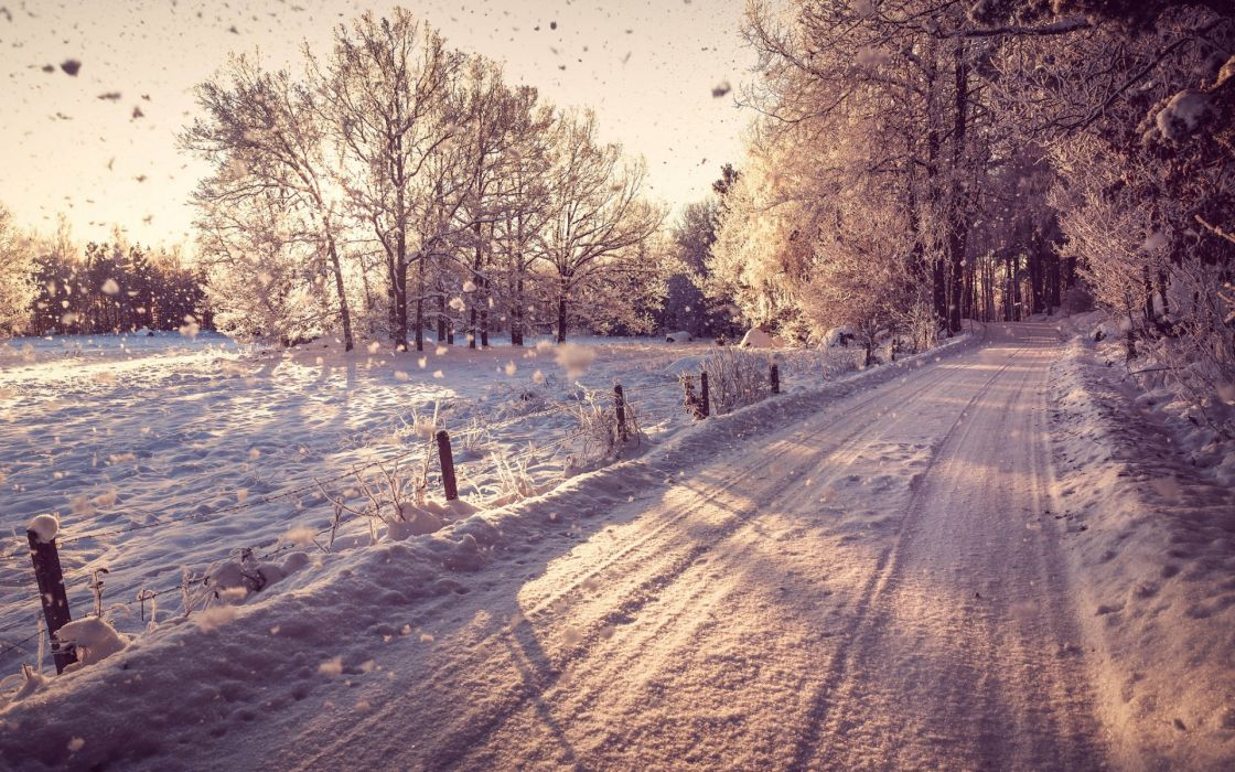 nature world roads street trail landscapes fence fields sunlight trees forest travel tunnel winter snow seasons snowing flakes drops sunrise sunset white wallpaper