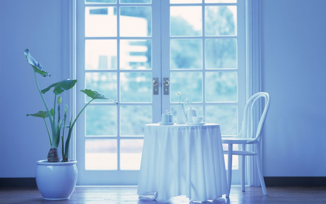 interior design room white bright window glass still life setting simple furniture pane plants drinks crystal vase flowers wallpaper