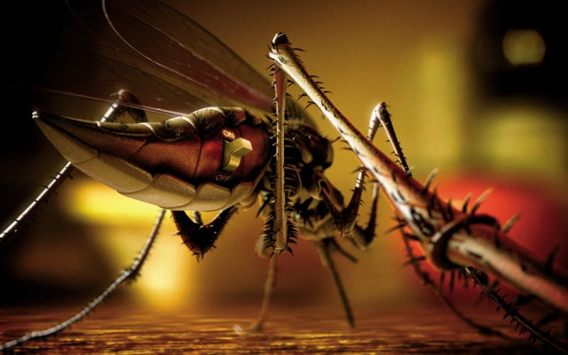 Mosquito animal insect sci fi science fiction steampunk punk mech tech detail robot cyborg wallpaper