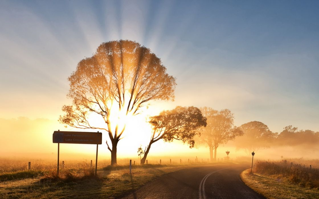 world roads sign nature landscapes fields trees sky sun sunlight sunbeam sunrise sunset bright color wallpaper