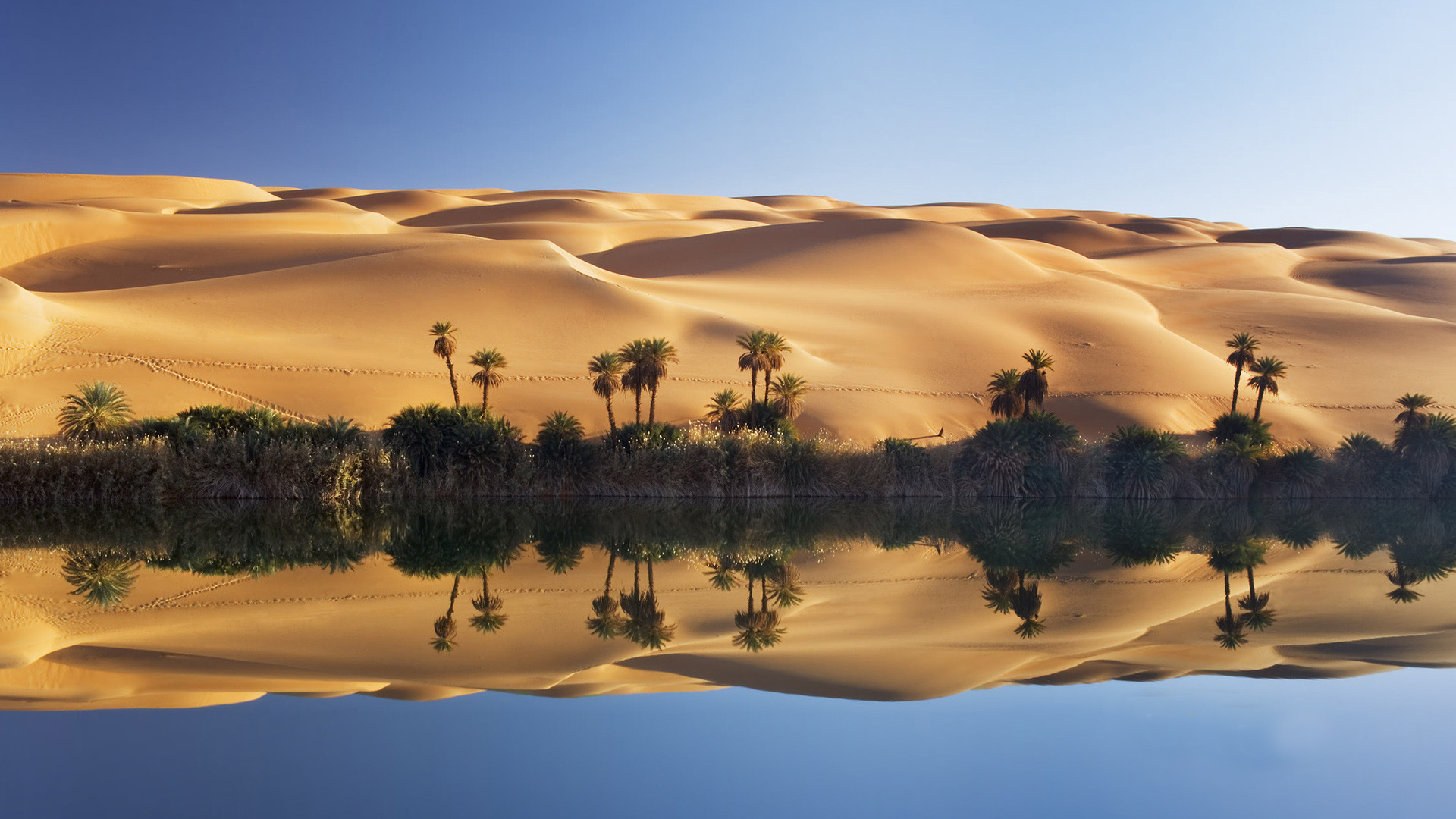 oasis landscape wallpapers archives - photo #4