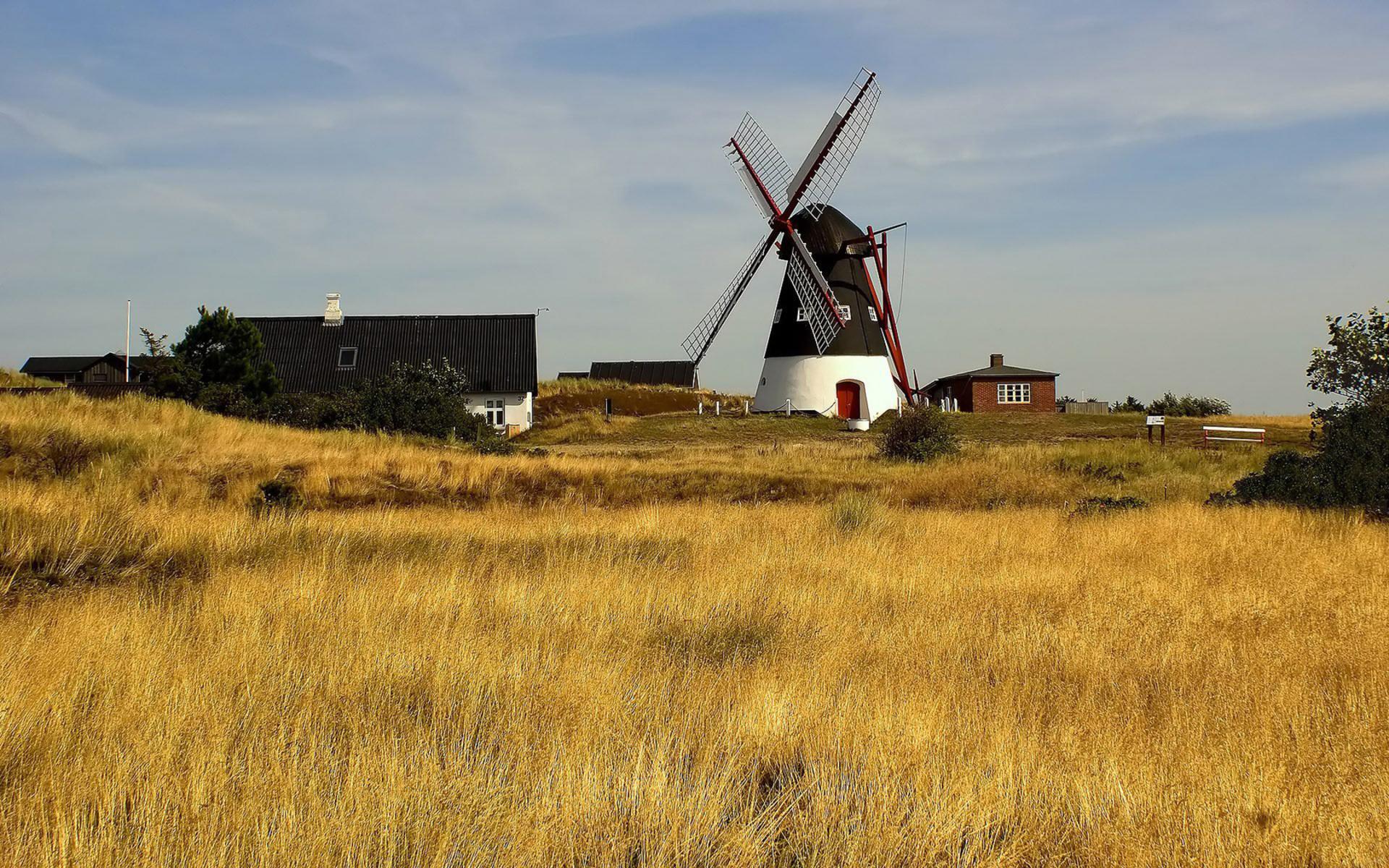Пейзаж с радугой мельница и корова