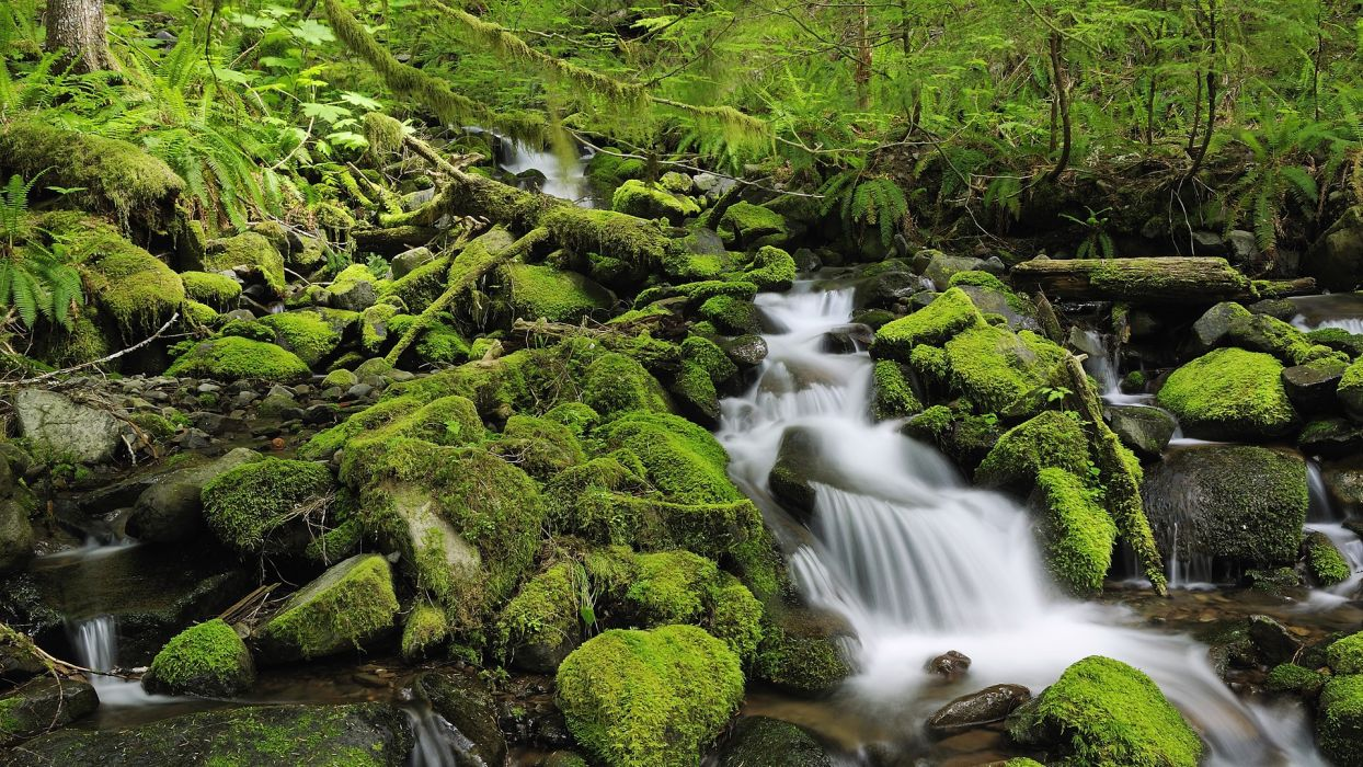 Stokes Nature Park