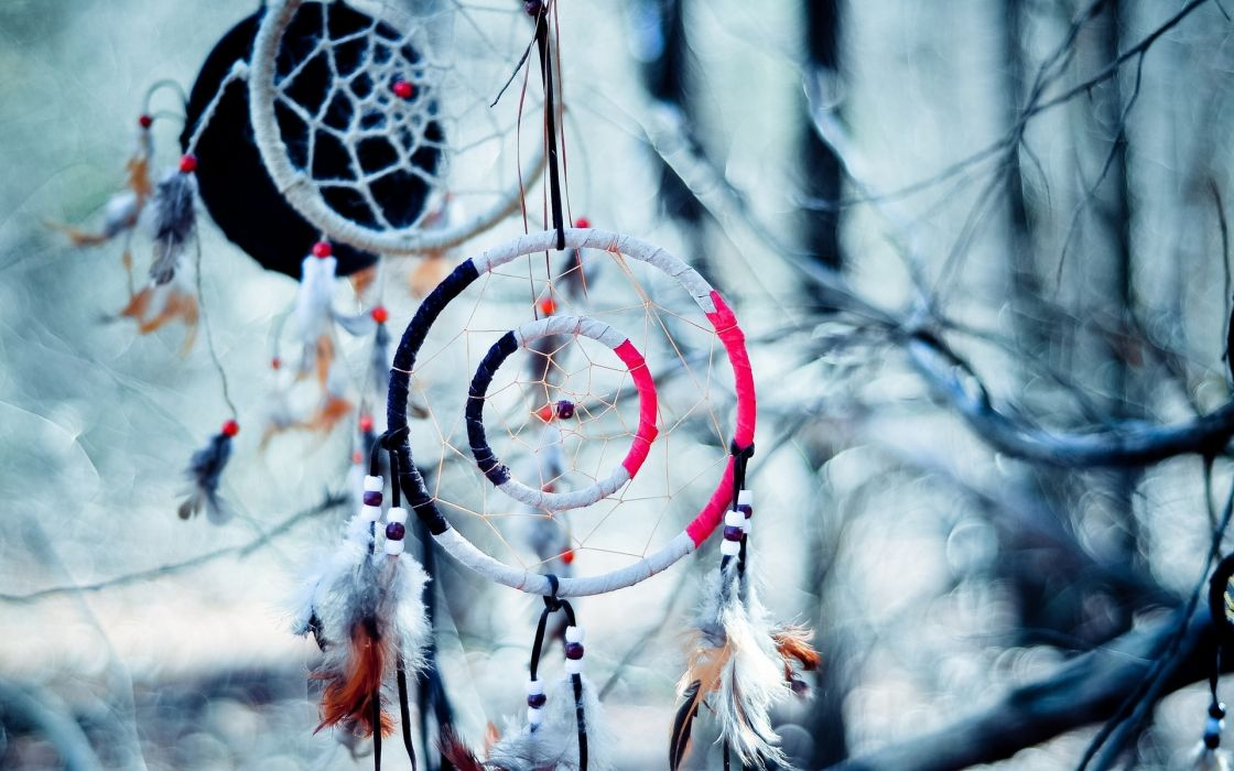 Dream Catcher native american artistic indian trees branch limb abstract photography wallpaper