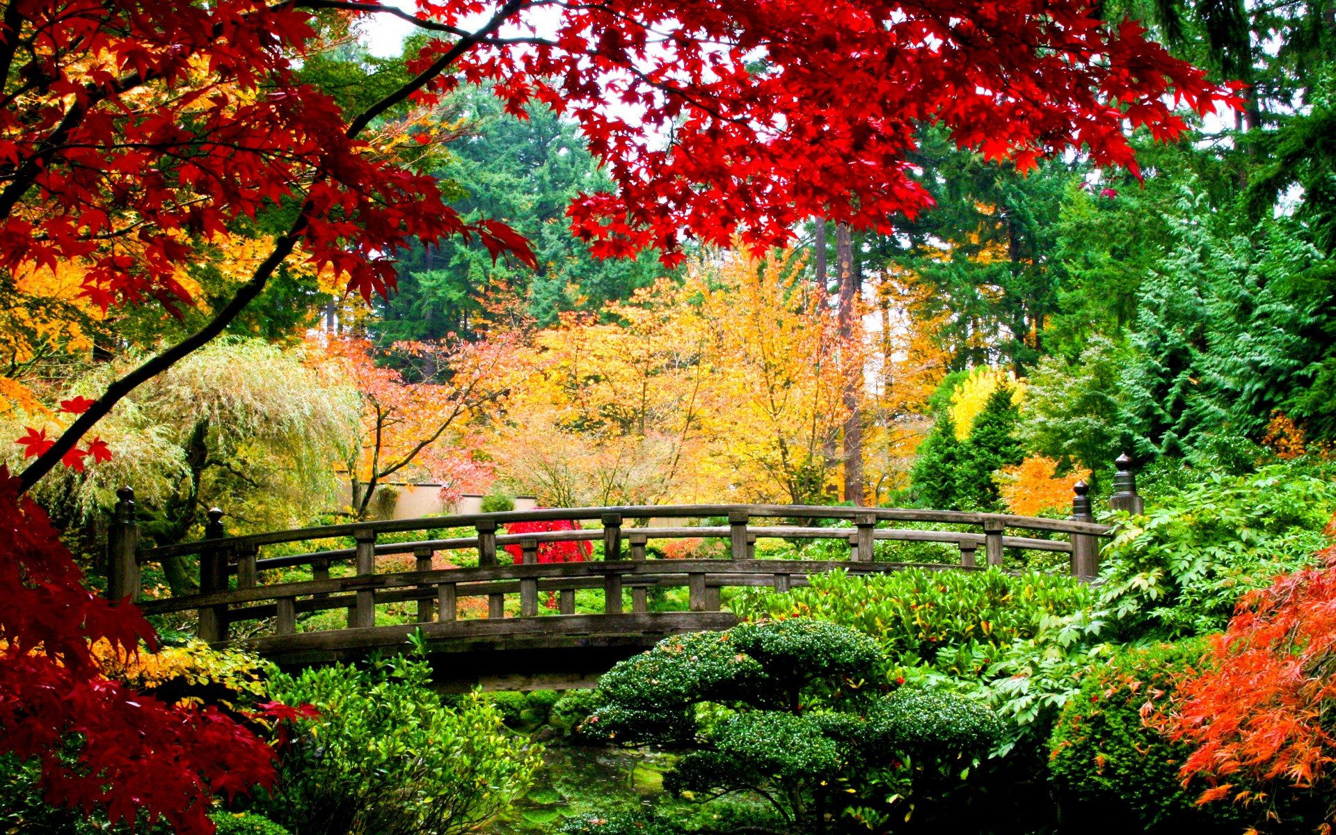 World architecture bridges asian oriental garden fall for Flowers for japanese gardens