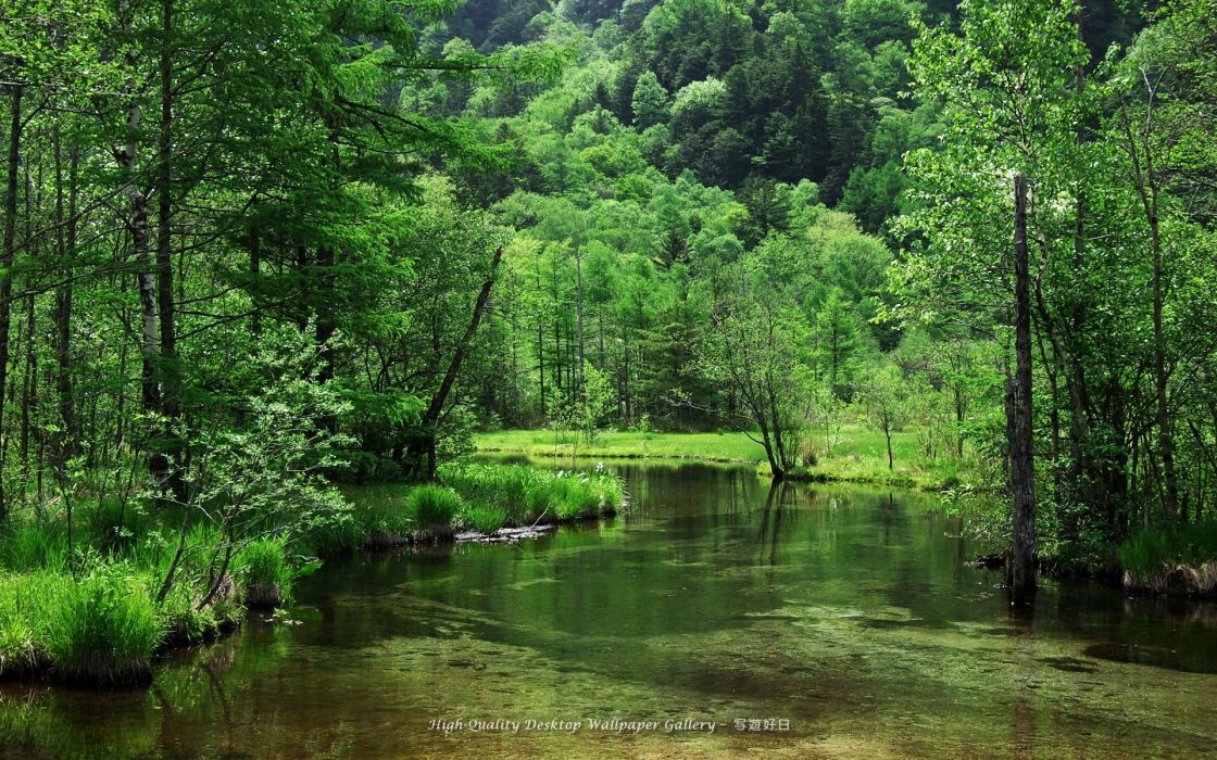 nature landscapes rivers stream water banks shore trees forest hills green spring seasons reflection wallpaper