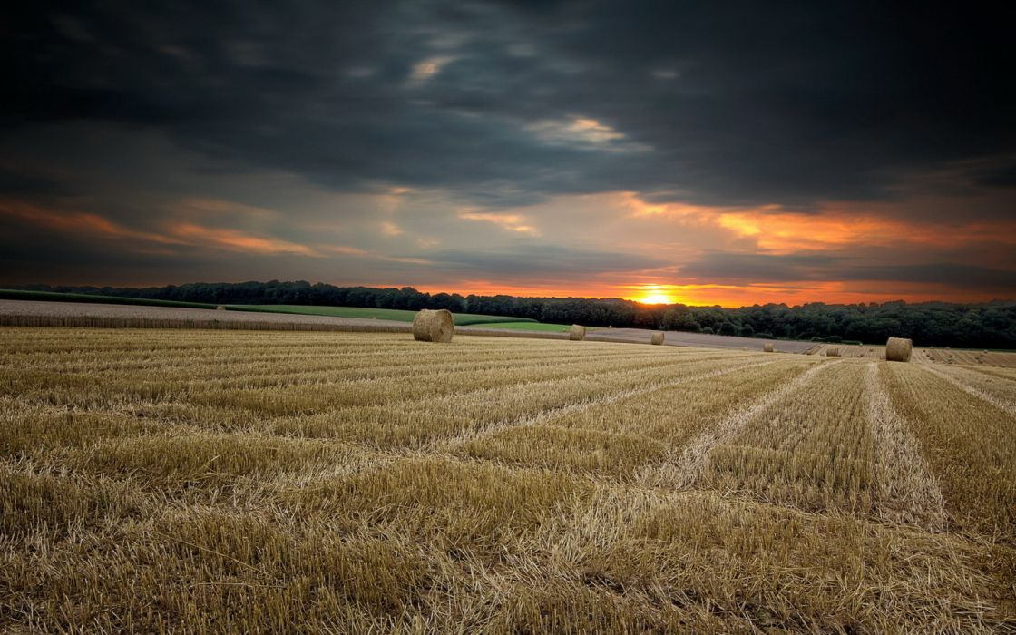 nature landscapes fields crops farm hay bales wheat rustic trees forest sky clouds sunset sunrise color wallpaper