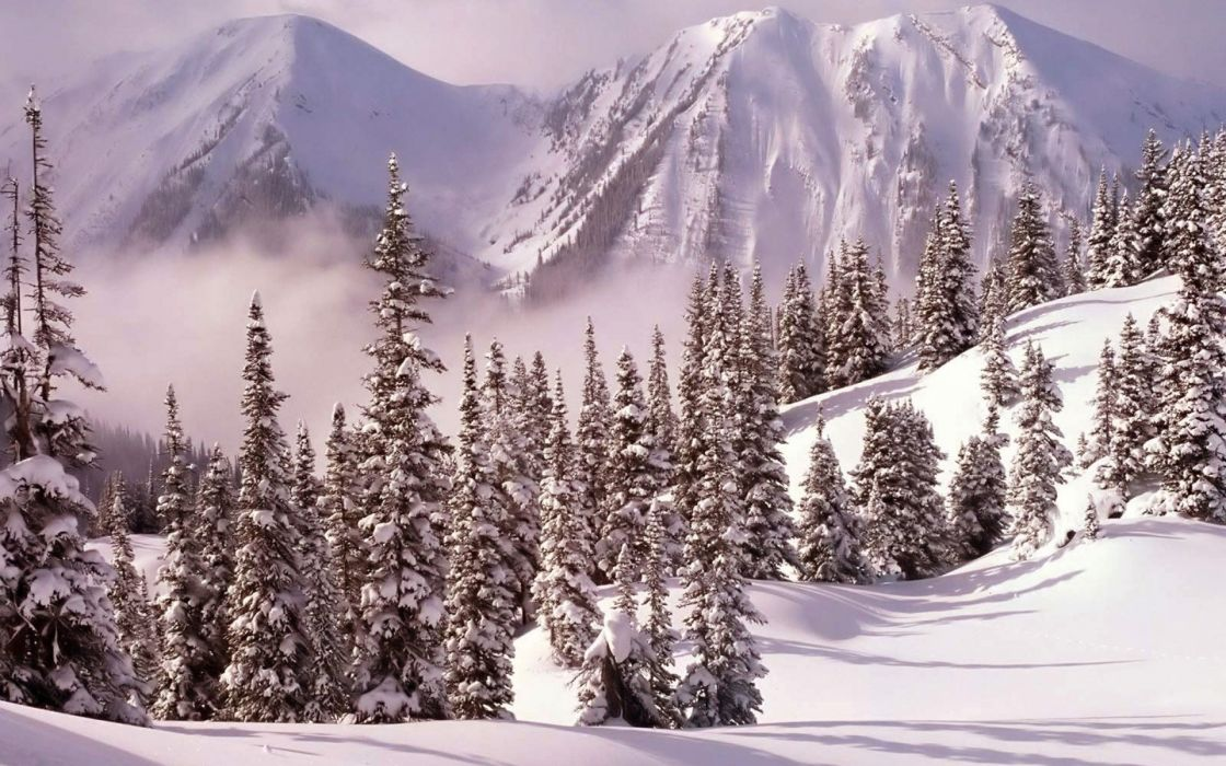 nature landscapes mountains trees forest fog haze mist cold winter snow seasons white bright wallpaper
