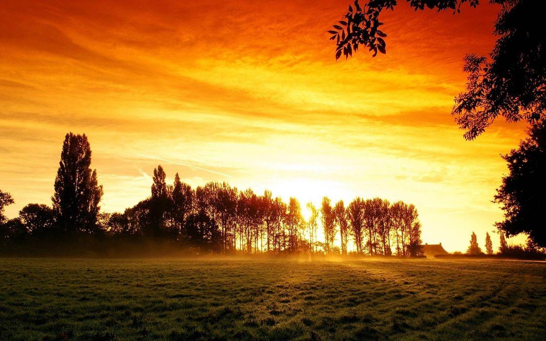 nature landscapes fields grass trees color sky clouds sunrise sunset wallpaper