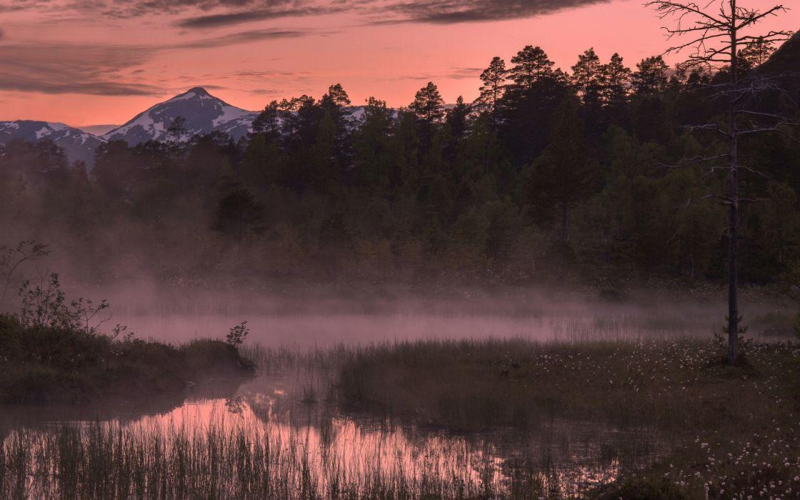 nature landscapes lakes ponds rivers plants marsh trees forest fog sunrise sunset sky clouds wallpaper