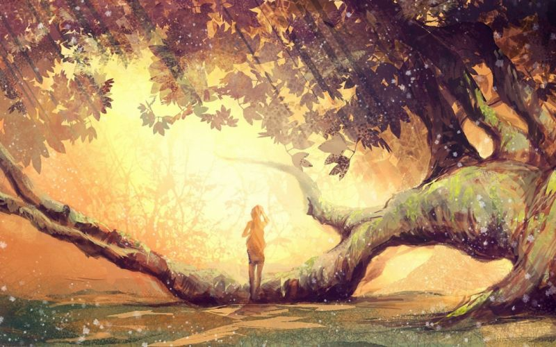 anime original fantasy art magic landscapes nature trees forest branch limb sunlight sunbeam light girls alone mood emotion wallpaper
