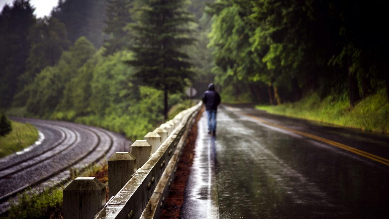 world roads railroad tracks fence people men males mood alone nature landscapes trees forest storm rain wet wallpaper