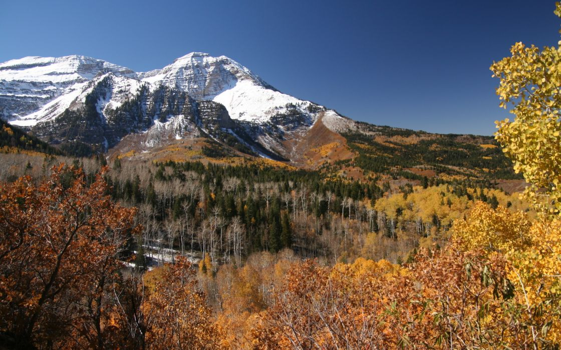 nature landscapes mountains trees forest autumn fall seasons sky snow scenic leaves wallpaper