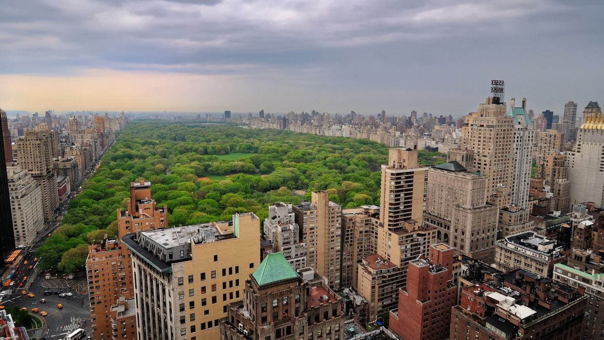 New York world architecture buildings skyscrapers park trees forest urban sky clouds scenic wallpaper
