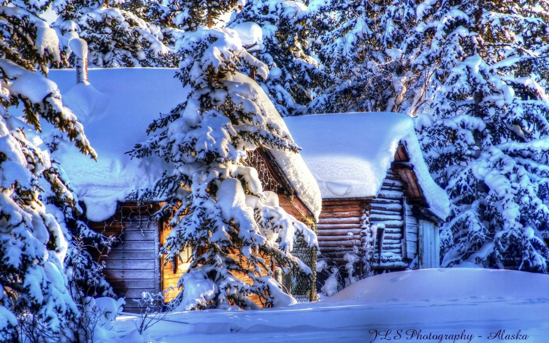 world architecture buildings houses cabins nature trees forest resort winter snow seasons hdr white sunlight wallpaper