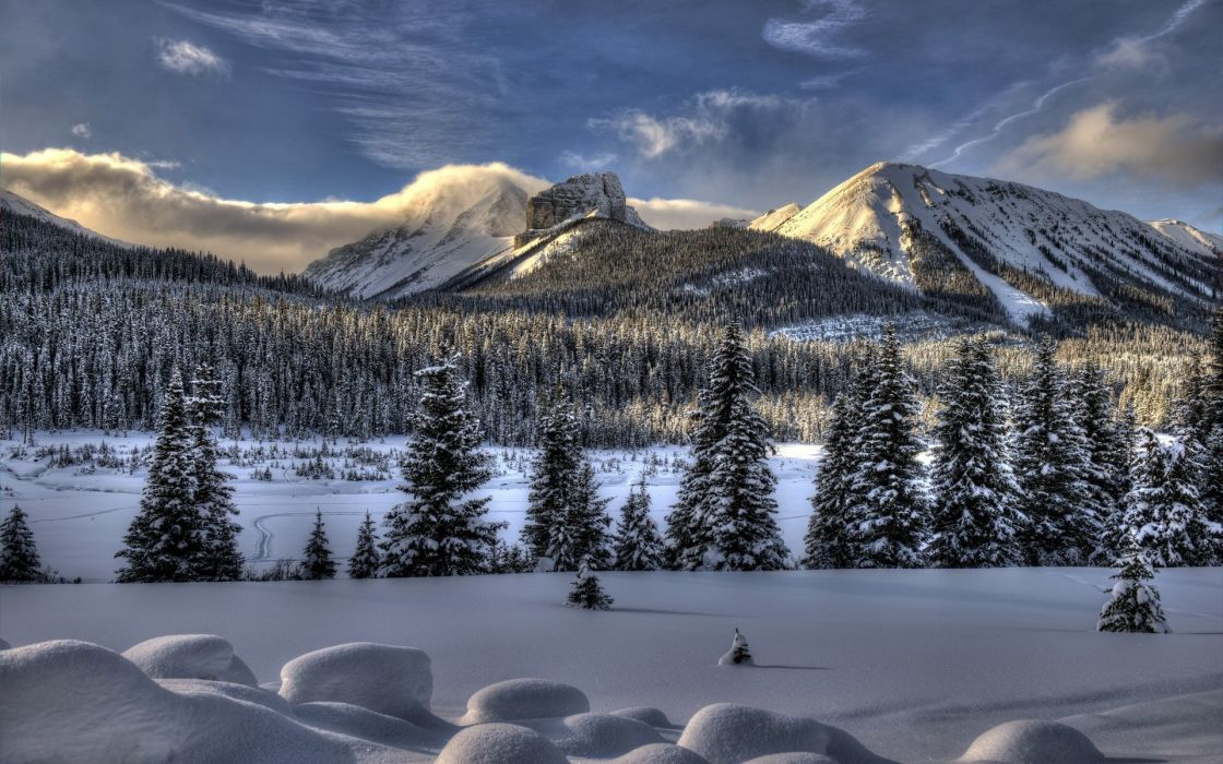 nature landscapes mountains trees forest wood winter snow seasons sky clouds fog sun sunlight wallpaper