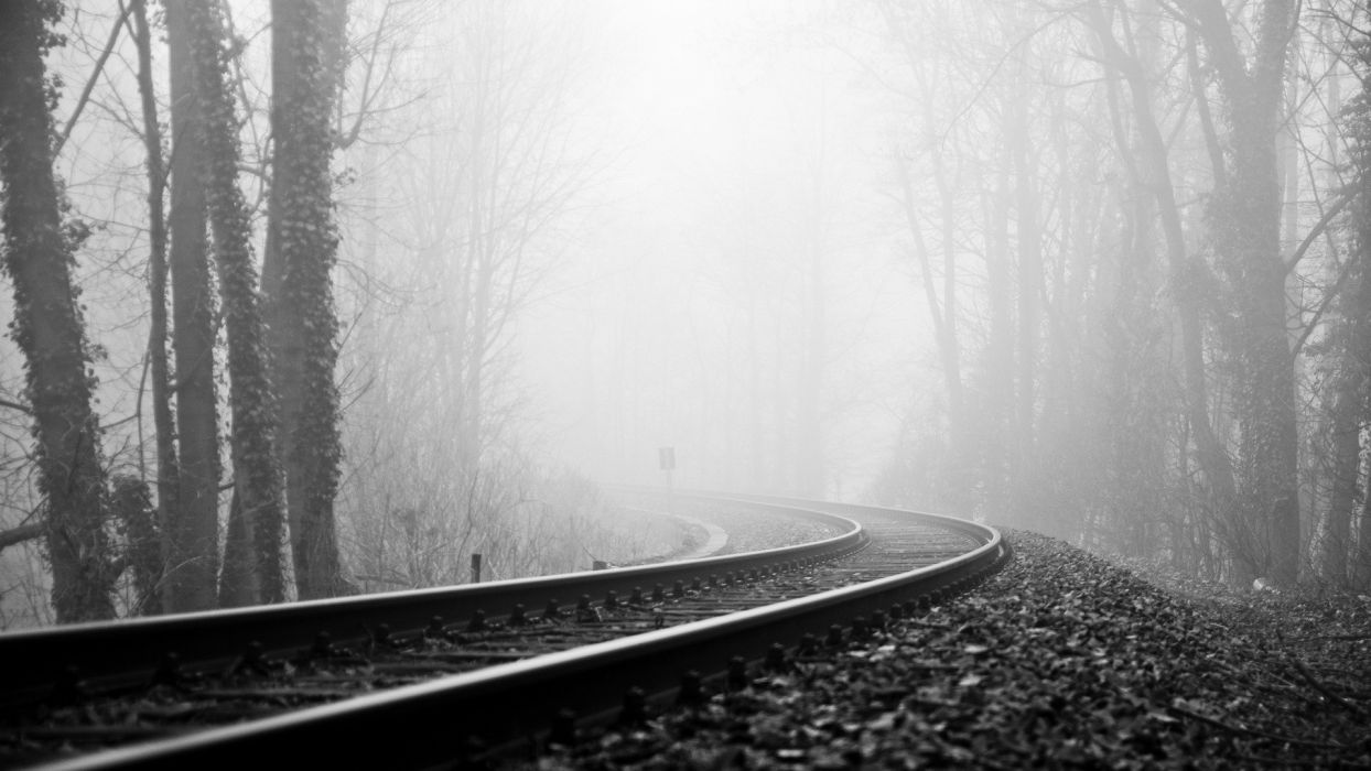 vehicles train tracks railroad black white trees forest fog haze wallpaper