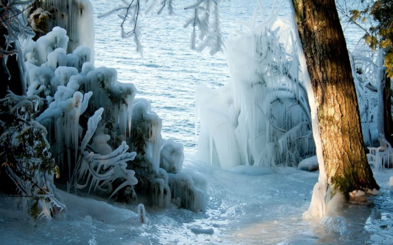 nature landscapes lakes trees forest wood ice storm winter seasons sunlight freezing wallpaper