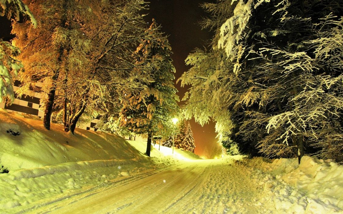 nature landscapes roads street night light trees winter snow seasons snowing flakes snowfall wallpaper