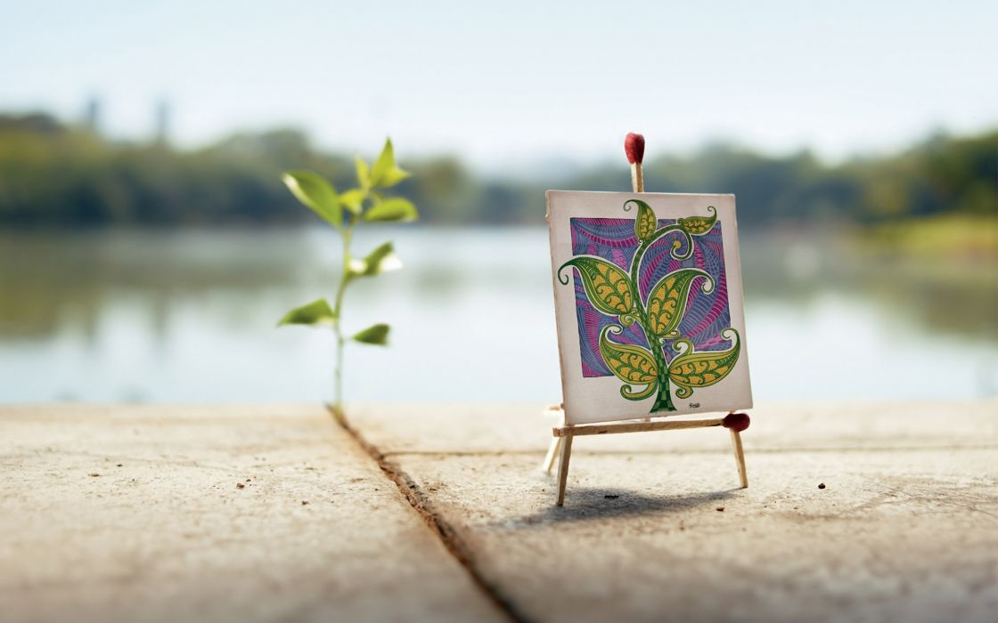 photography bokeh art artistic paintings humor funny lakes plants wallpaper