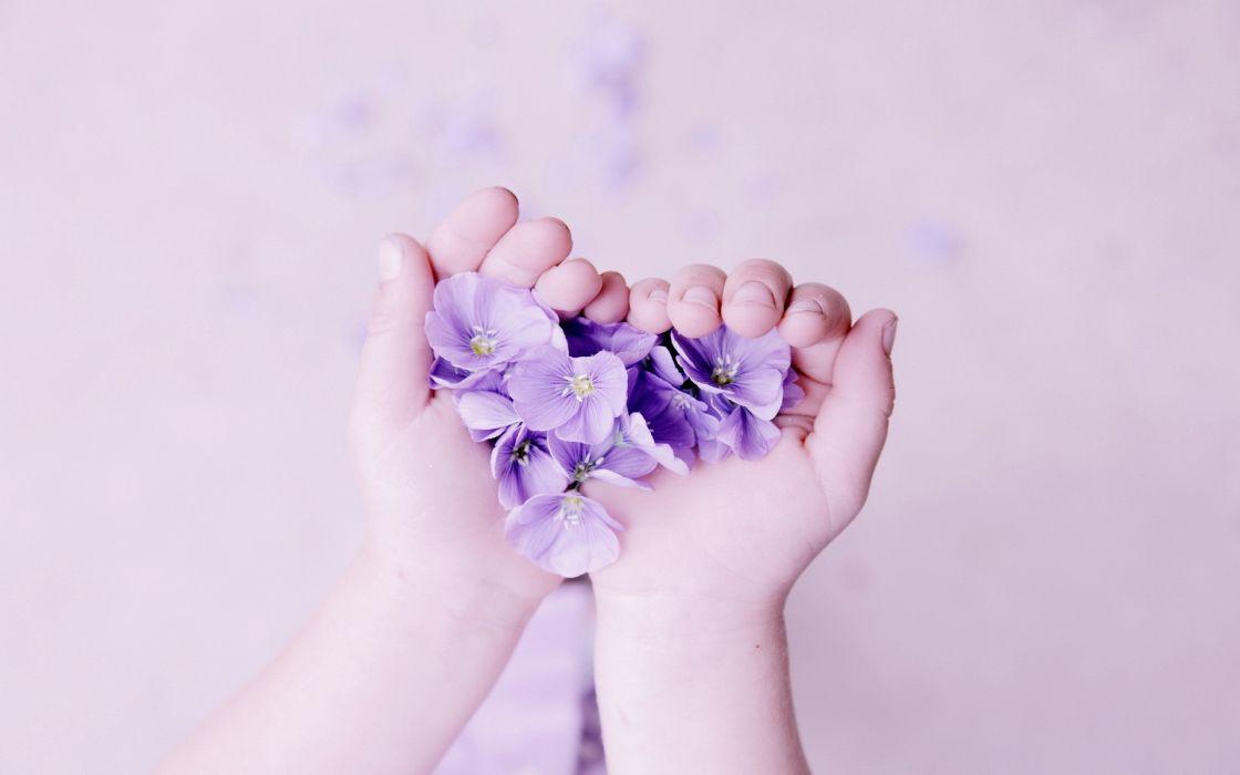 bokeh love romance mood emotion heart hands soft flowers wallpaper