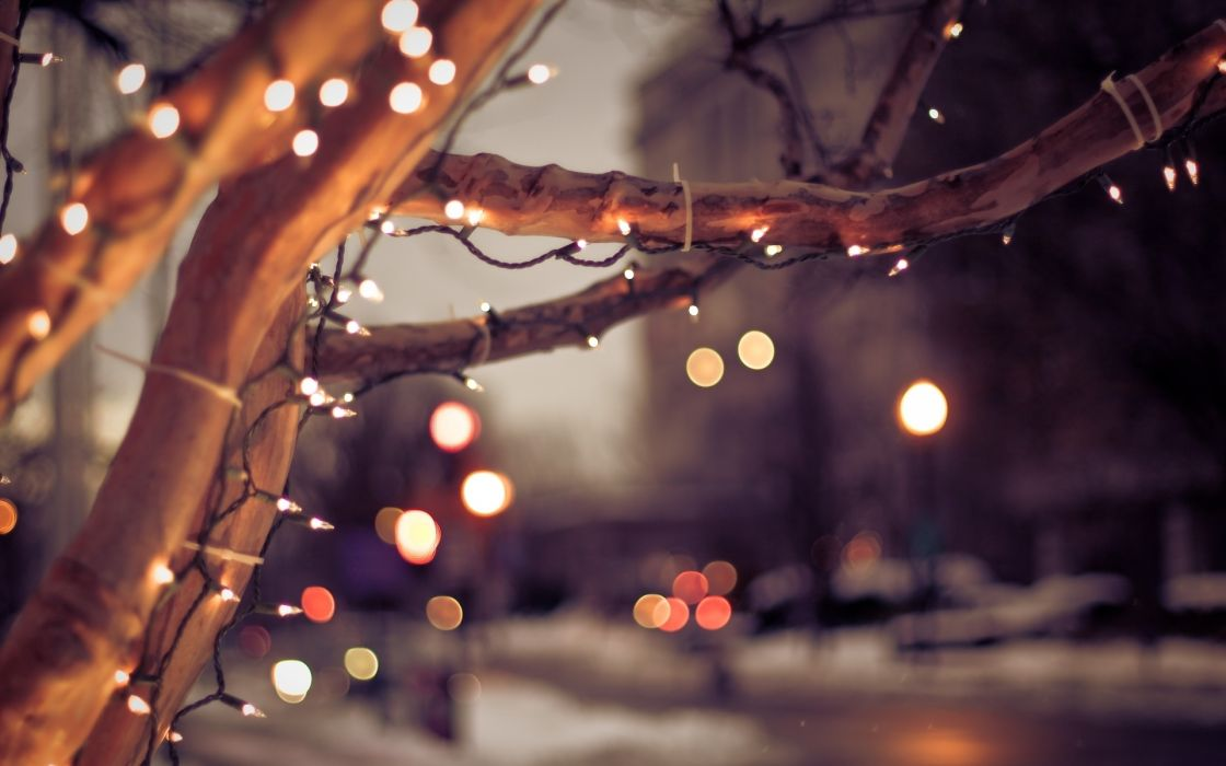 bokeh trees lights holidays sparkle roads macro close up cities architecture buildings mood wallpaper