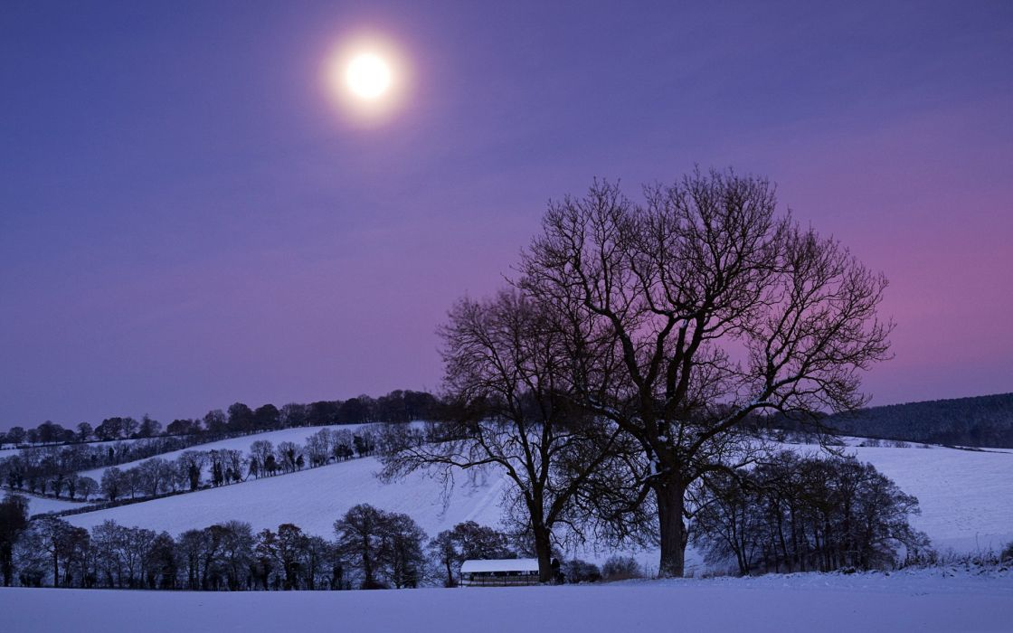 nature landscapes trees farm pasture fields hills winter snow seasons night moonlight light sunset sunrise wallpaper