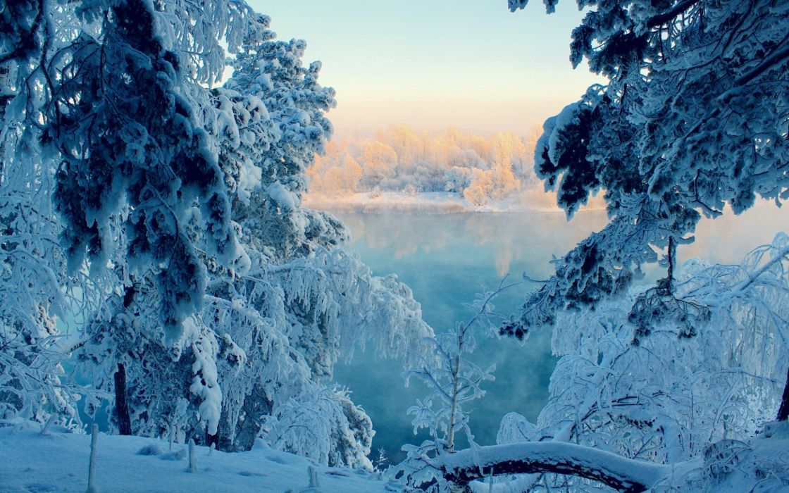 nature lakes trees forest sunlight sunrise reflection water winter snow seasons woods wallpaper