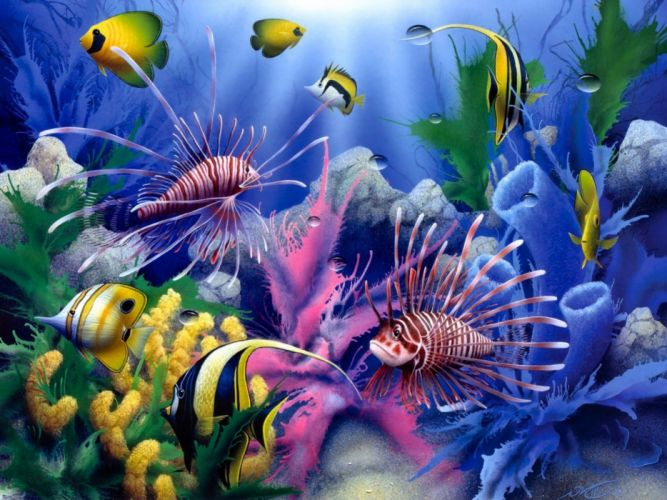 Lions of the Sea David Miller painting art animals fishes tropical sealife life color underwater coral reef ocean sea sunlight wallpaper