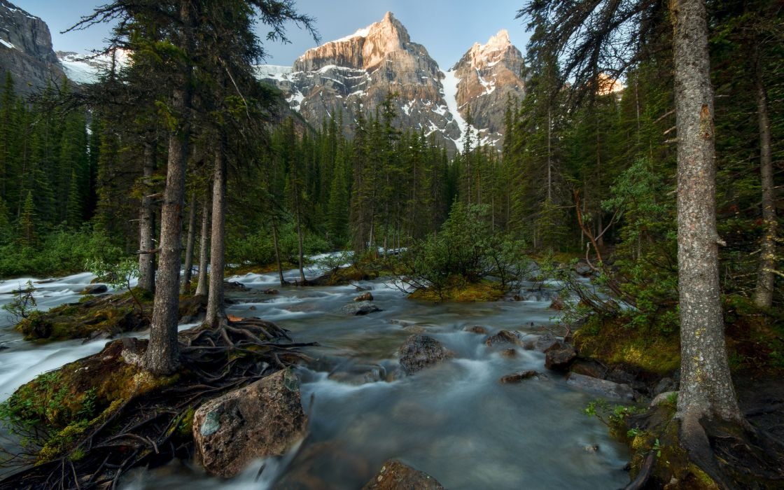 nature landscapes rivers trees forest mountains wallpaper