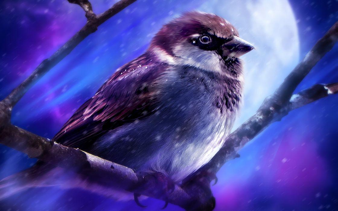 animals birds painting art moon wallpaper
