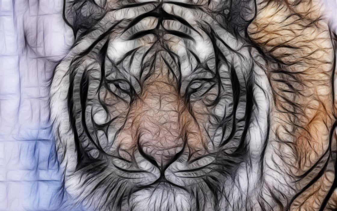 abstract fractal art cg digital tiger stripes pattern predator pov eyes wallpaper