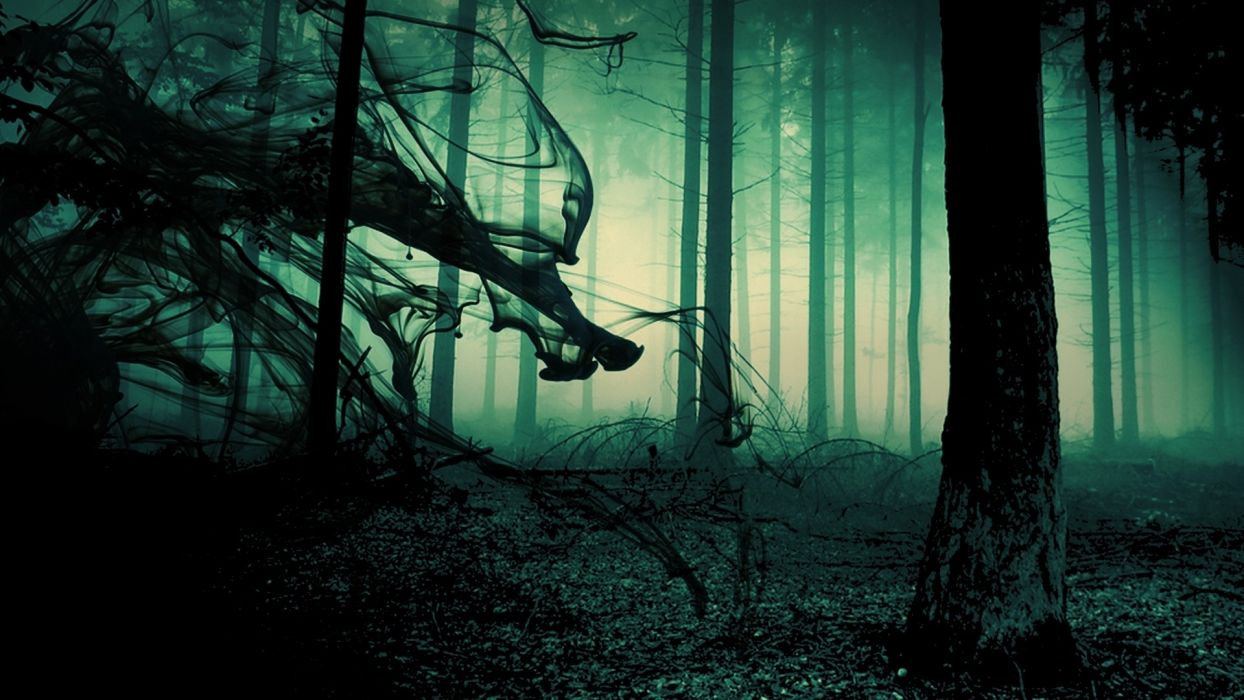 gothic poe dark horror macabre scary creepy spooky occult withc demon undead smoke abstract manipulation psychedelic nature trees forest fog mood sunlight moonlight light wallpaper