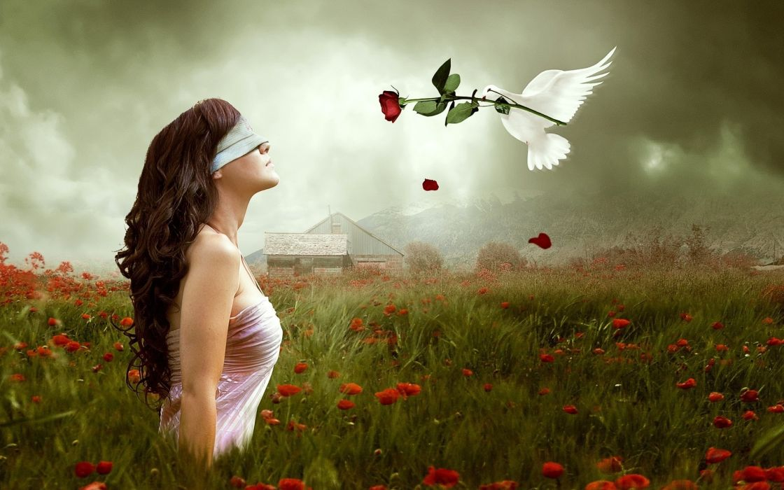 mood emotion gothic manipulation cg digital art blindfold dove animals birds love romance fantasy nature landscapes fields flowers poppy sky clouds wallpaper