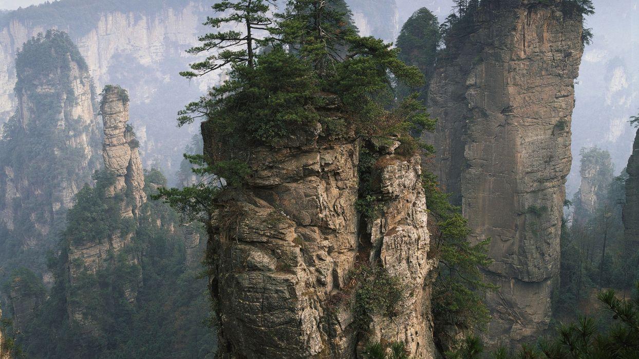 nature mountains trees wallpaper