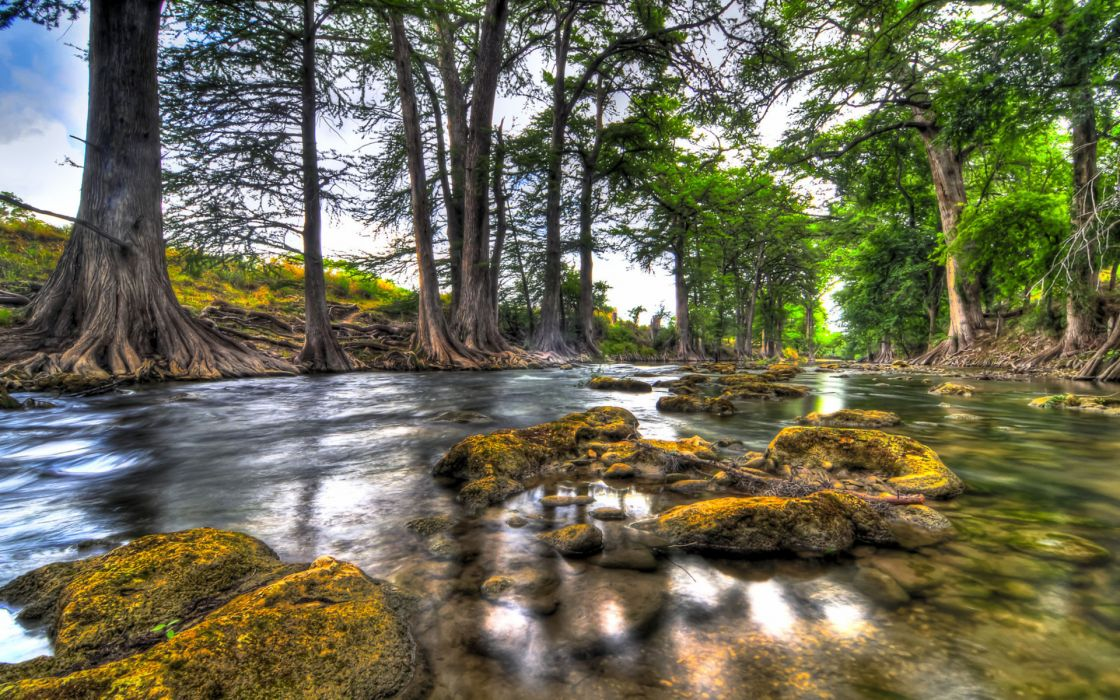 landscapes water reflection rock trees forest hdr wallpaper