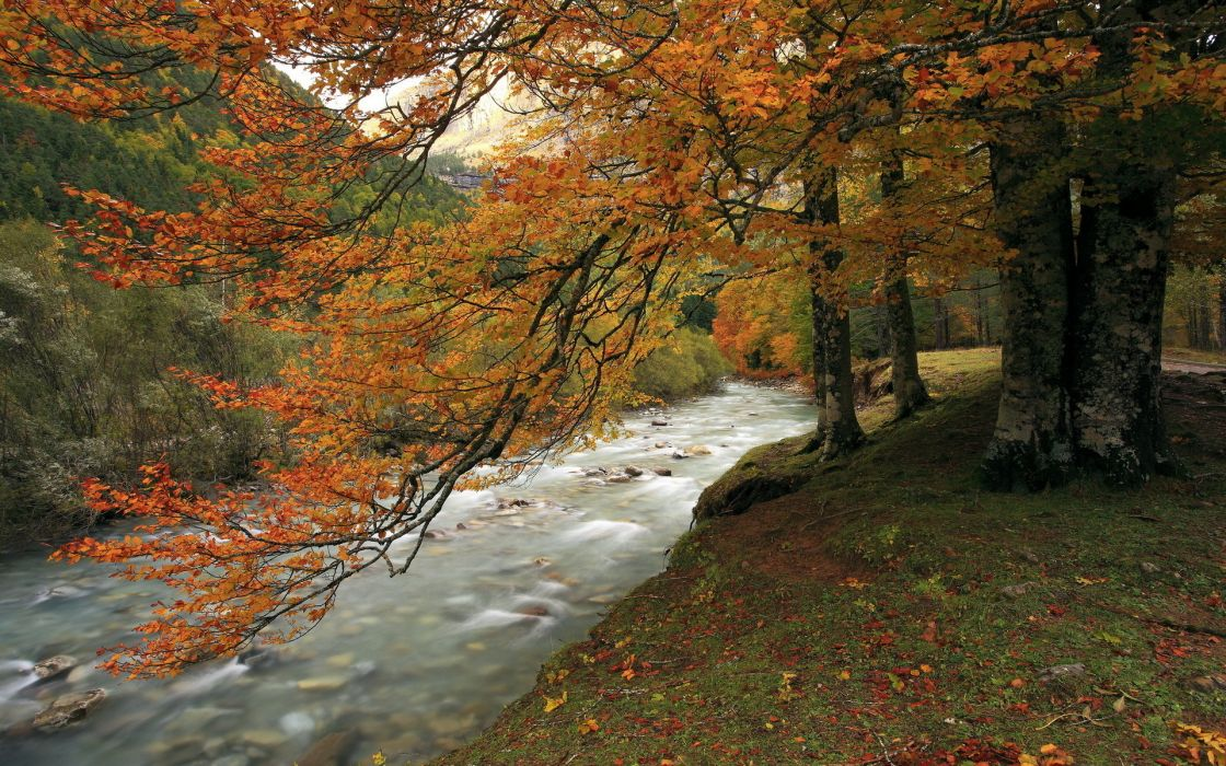 stream landscapes autumn fall trees forest hills mountains leaves wallpaper