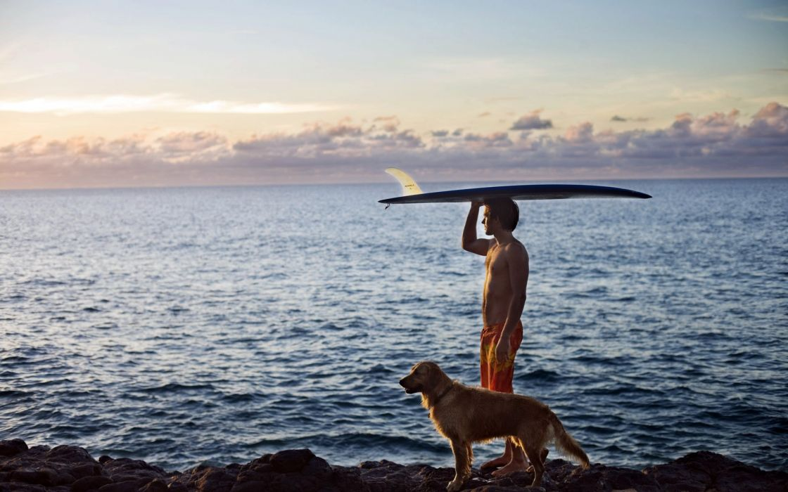 surfing animals dogs people men boys surfboard ocean sea mood sky clouds wallpaper