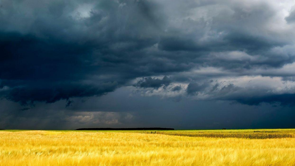 fields grass sky clouds storm wallpaper
