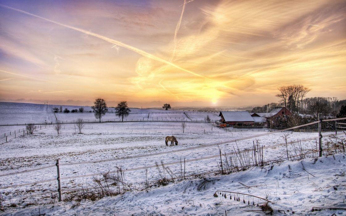 winter sunsety sunrise wallpaper