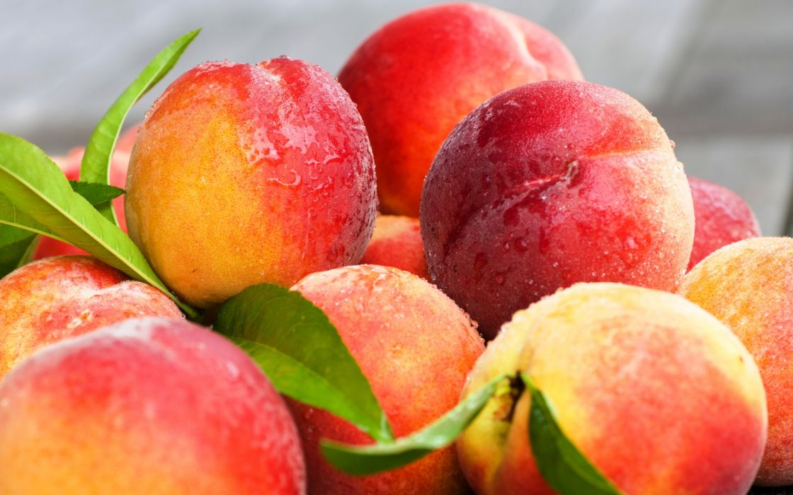 fruit peach wallpaper
