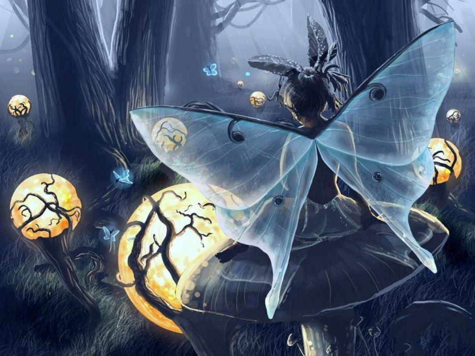 fantasy fairy art wallpaper