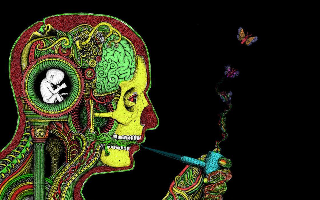 art dark skull psychedelic butterfly mood marijuana anatomy wallpaper